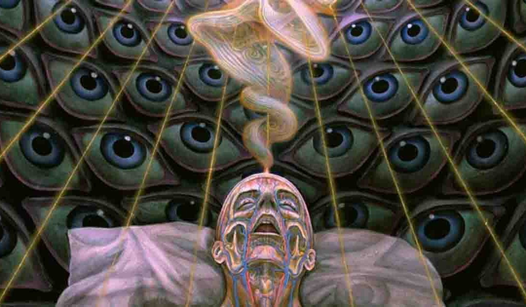 Highlights of the Infinite Consciousness Conference – VIDEO